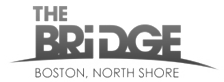 NS Bridge logo