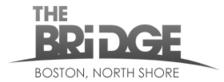 NS Bridge logo